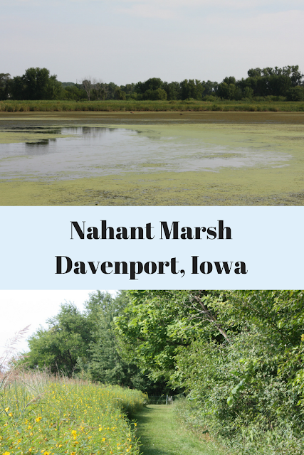 Exploring Nahant Marsh in the Quad Cities