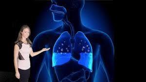 cara menyembuhkan paru paru basah dengan obat herbal paru paru basah