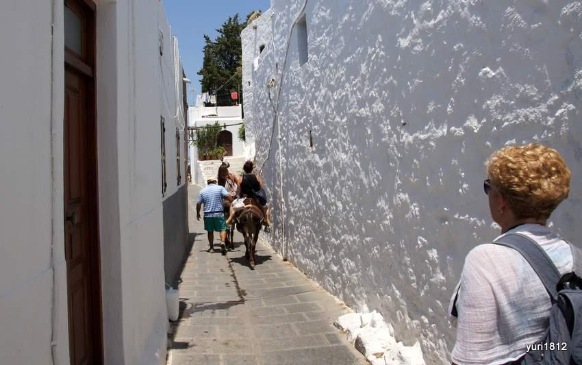 Ослики - местное такси для туристов