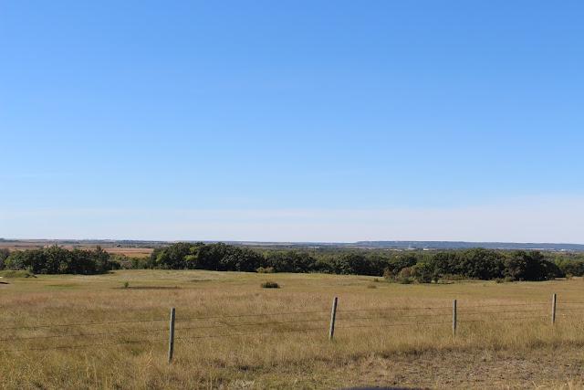 Manitoba Pasture land