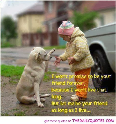 animal, dog, cat, pet, animal, inspiring quotes for animal lovers, petsnmore.org, child,