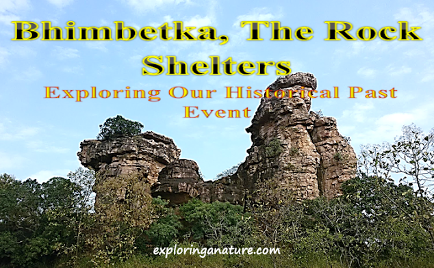 Bhimbetka- The Rock Shelter