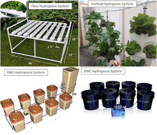 """hydroponic system"",""best buying hydroponic system"",""hydroponic system models for outdoors gardening"""
