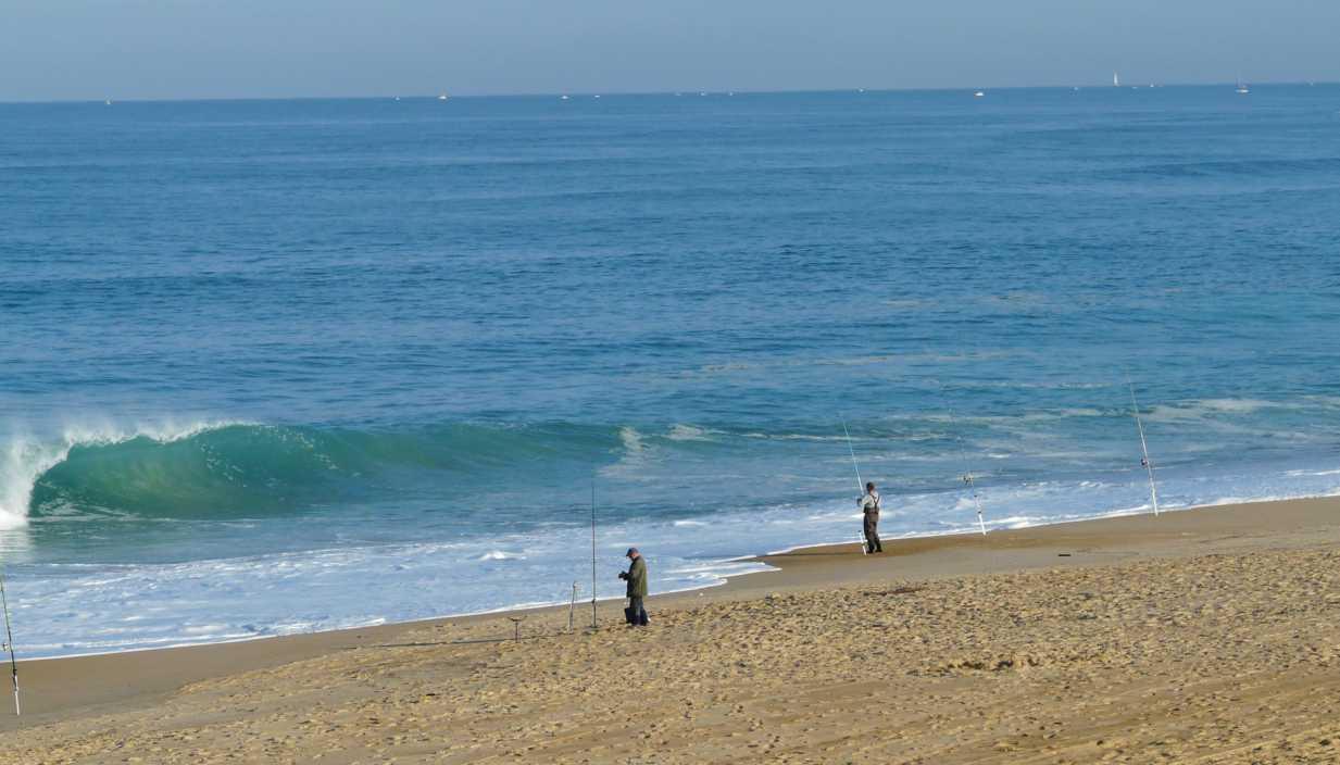 surf landas 14