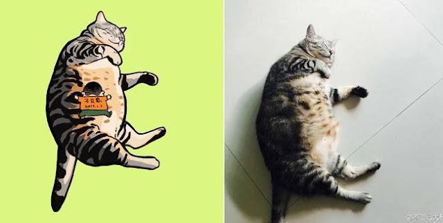 """Nếu yêu mèo, bạn sẽ muốn """"phát điên"""" trước chùm tranh siêu cấp dễ thương này"""