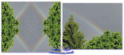 odbicie lustrzane - 6-9 ptaki drzewa tęcza