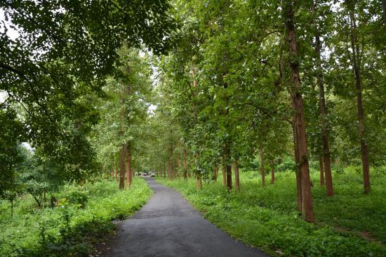 Nedumkayam - Malappuram - www.touristplacesinkerala.tk