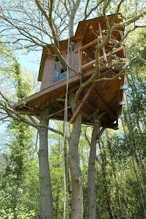 Chi non sognava da bambino di farsi la casa sull 39 albero - Costruire casa albero ...