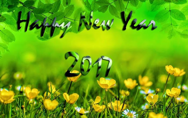 Happy New Year 2017 HD Wallpaper 12