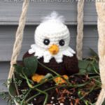 https://www.facebook.com/notes/fiberdoodles-by-k4tt/memorial-day-eaglet/1297678173613611/