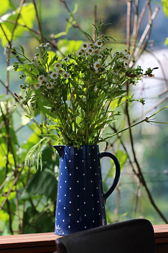 Wildblumen in der Vase im Teepavillon im großen Garten | Arthurs Tochter kocht von Astrid Paul, der Blog für food, wine, travel & love
