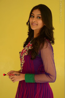 Actress Pooja Jhaveri Latest Stills in Purple Salwar Kameezt at Dwaraka Success Meet  0048.JPG