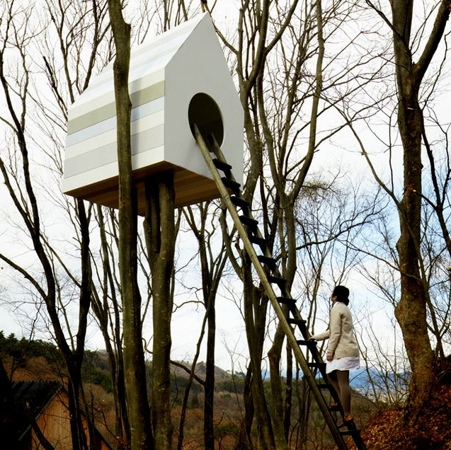 Treehouse Apartments: The Flying Tortoise: This Treehouse In Japan Is A High