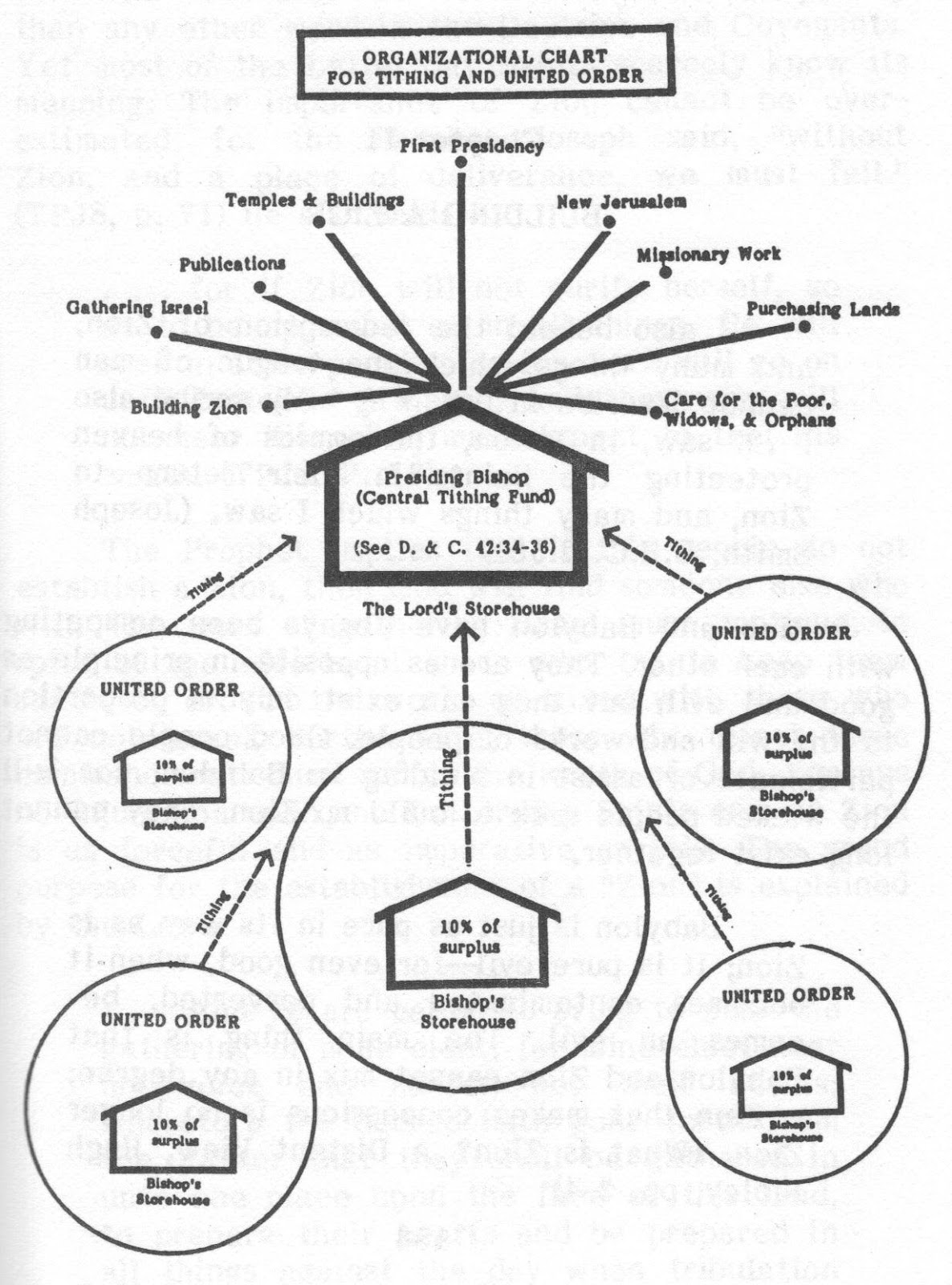 Organizational Chart For The United Order Exmormon