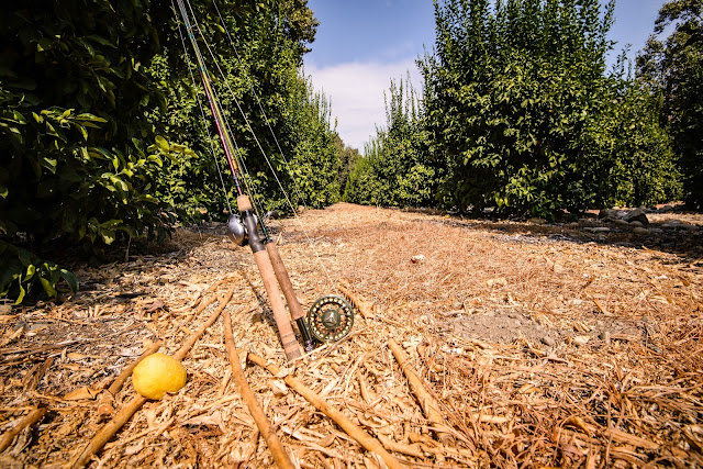 Fishing Rod and Lemon