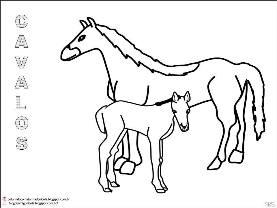 fotos de cavalos para colorir