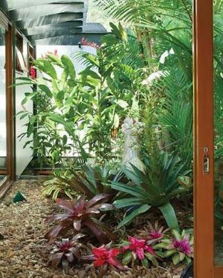 blog-inspirando-garotas-plantas