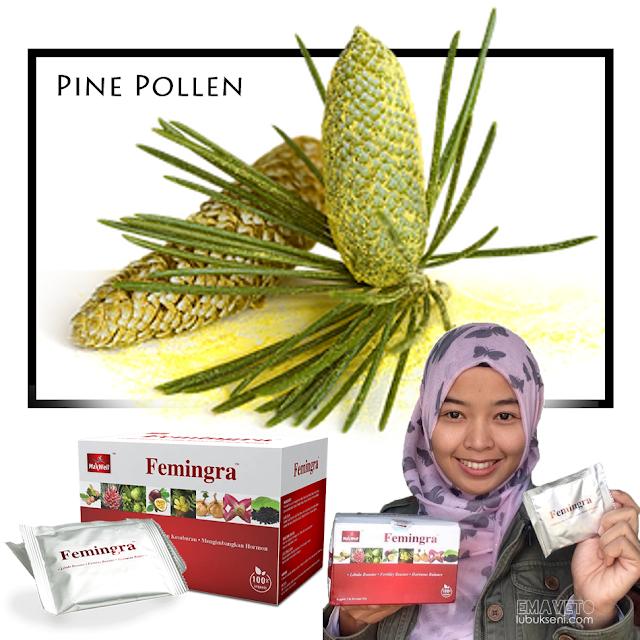 Femingra _ Pine Pollen, buah Markisa, Horny Goat Weed (Epimedium), Akar Maca, Manjakani, Tribulus Terrestris dan Puararia Mirifica _ meningkatkan libido & kesuburan, serta seimbangkan hormon.