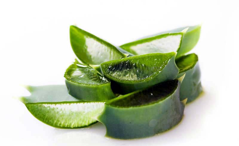 7 Amazing Benefits And Uses For Aloe Vera