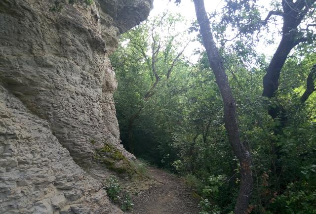 Racó camí del monestir