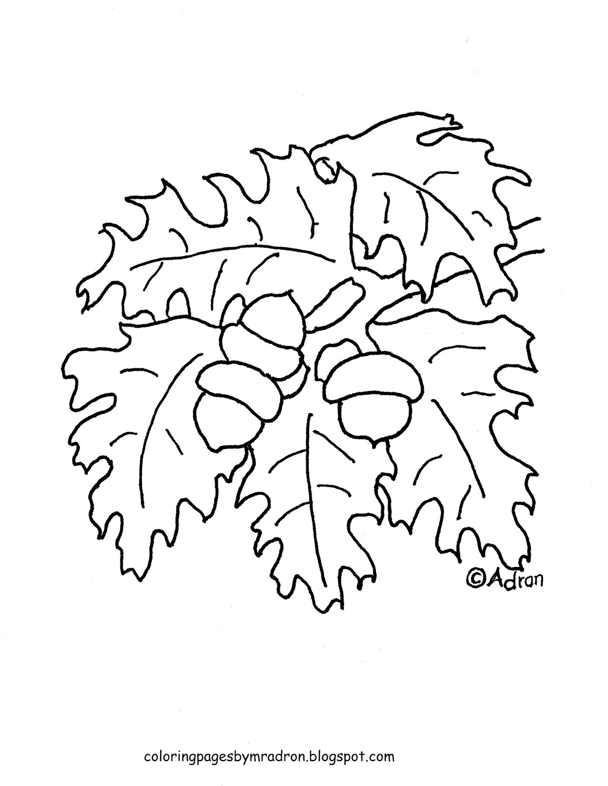 Coloring Pages for Kids by Mr. Adron: Printable Acorns and Leaves ...