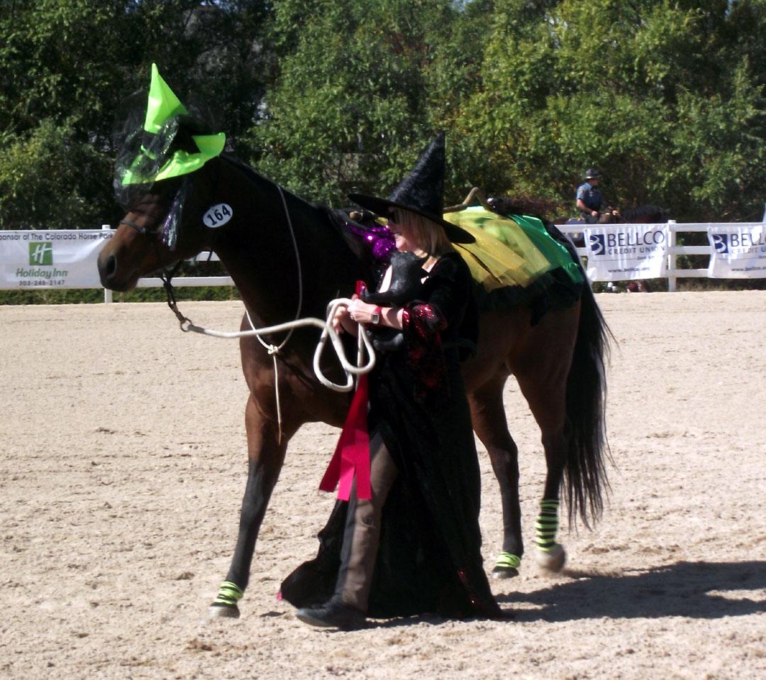 Adult Female Jockey Horse Riding Fancy Dress Up Party ... |Horse Fancy Dress Costumes