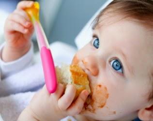 Introduccion a la alimentacion infantil