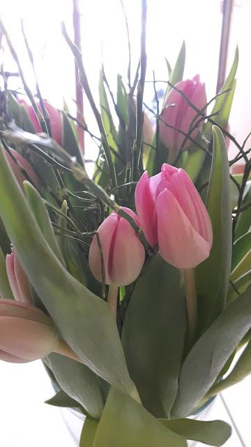 rosa Tulpen mit Blaubeer-Zweigen