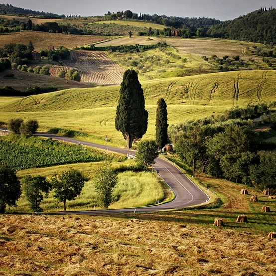 Dreaming of Tuscany...