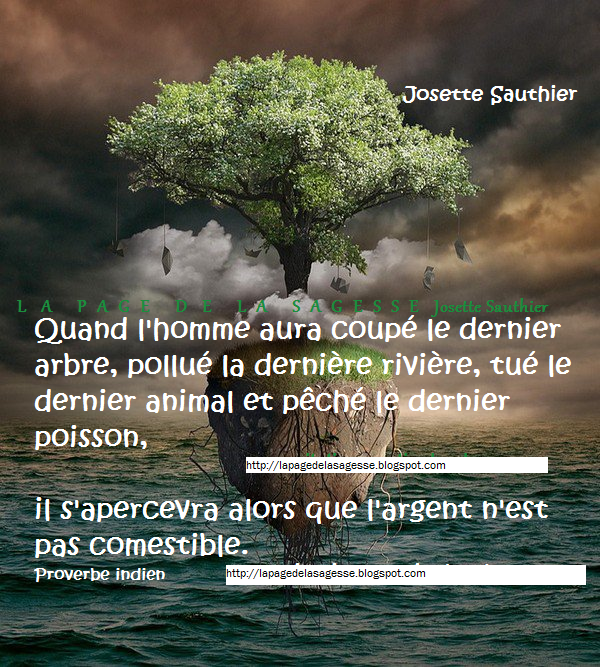 La Page De La Sagesse Citation Sur La Nature
