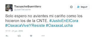 meme y cuanta de twitter del tlacuache guerrillero