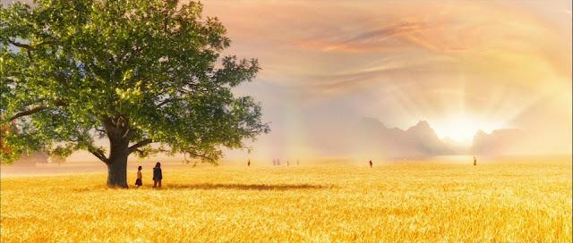 Resultado de imagem para imagens do paraíso