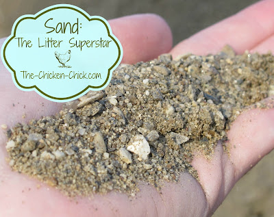 Sand performs brilliantly as a litter choice for backyard chickens both in the coop and in the run