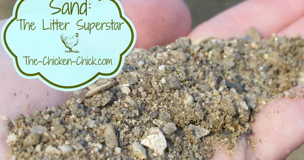 Chicken Coop Litter: Sand, the Litter Superstar | The Chicken Chick®