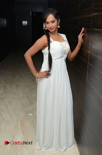 Actress Nakshatra Pictures in White Long Dress at Rojulu Marayi Movie Audio Release Function  0027