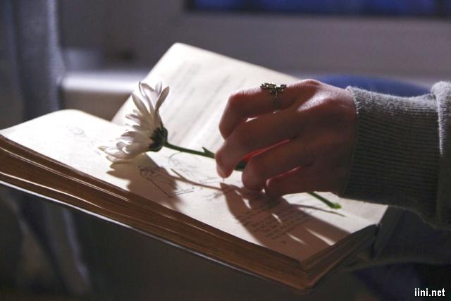 ảnh đặt hoa và cuốn sách