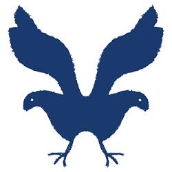 River Bird Studio