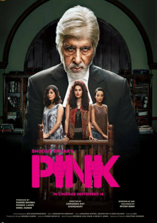 Poster of Pink (2016) Full Hindi Movie Download BRRip 720p 1Gb