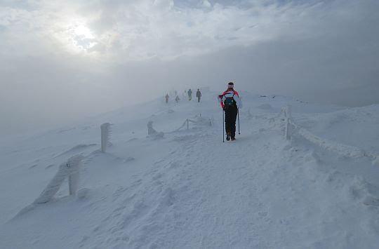 Przed szczytem Tarnicy.