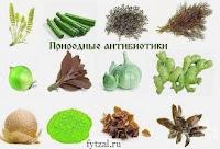 естественные природные антибиотики