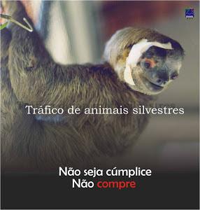 Diga não ao comércio ilegal de animais