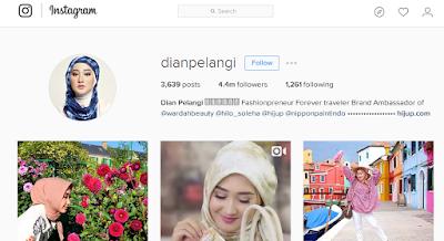 instagram dian pelangi