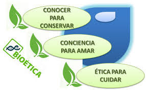 ¿Que son los Valores Ambientales?
