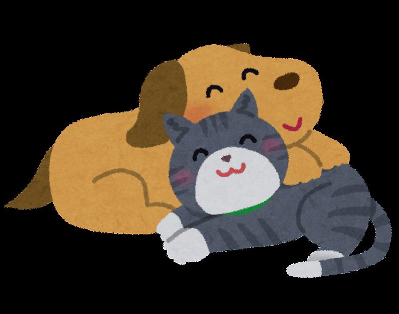 仲良しの犬と猫のイラスト かわいいフリー素材集 いらすとや