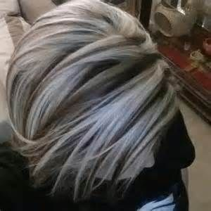 Amazing silver highlights the haircut web gallery solutioingenieria
