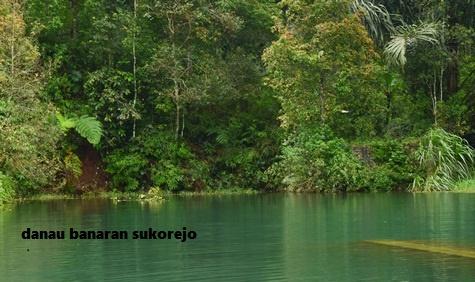 Danau Banaran Sukorejo