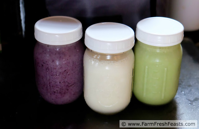 image of 3 smoothies in regular mouth canning jars--purple, white, and green