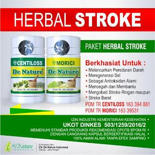 Obat herbal gejala stroke, Obat herbal stroke, Obat gejala stroke