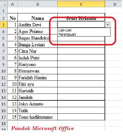 Excel Data validation list Manual Entry