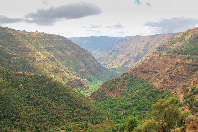 view of a valley from our hike in the simien mountains